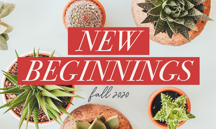 New Beginnings_Speaker Link2
